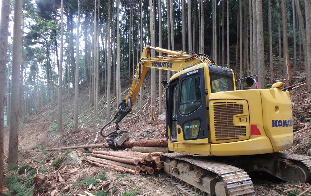 素材生産・森林調査・森林保育